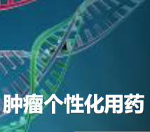 专利交易-肿瘤个体化治疗基金检测系列试剂盒